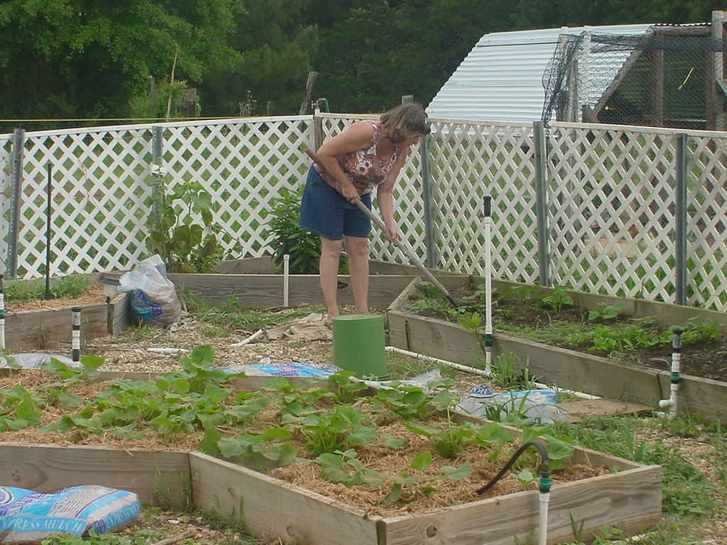 Pate farms gardens - Weeding garden make work easier ...